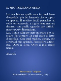 Narranti Erranti (3)